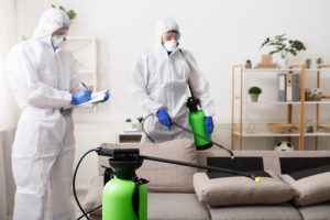 how-often-should-you-disinfect-your-house